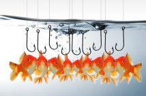 Bewerbung an eine ausgewählten Zielgruppe an Unternehmen