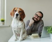 Einfach tierisch: Hunde als Burnout-Prävention im Büro