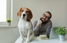 Hund im Büro verhindern Burnout
