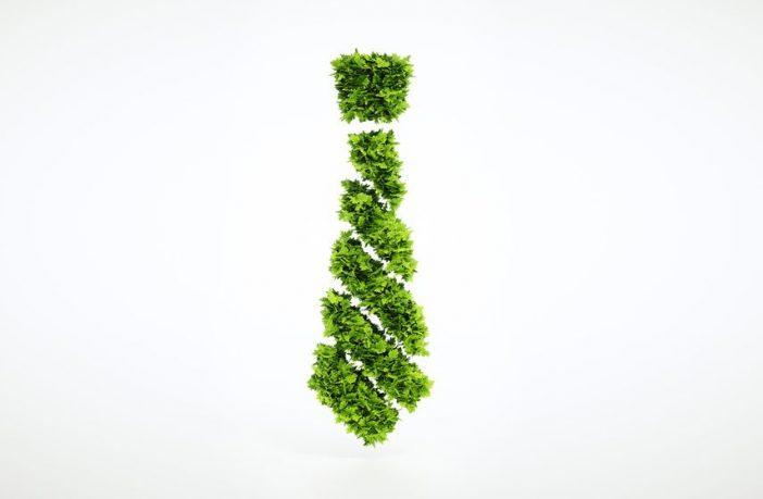 Nachhaltigkeit in der Berufswelt
