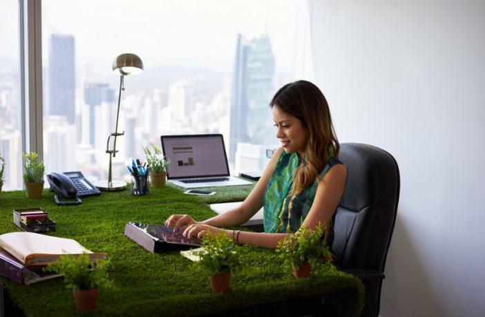 Arbeiten im grünen Büro