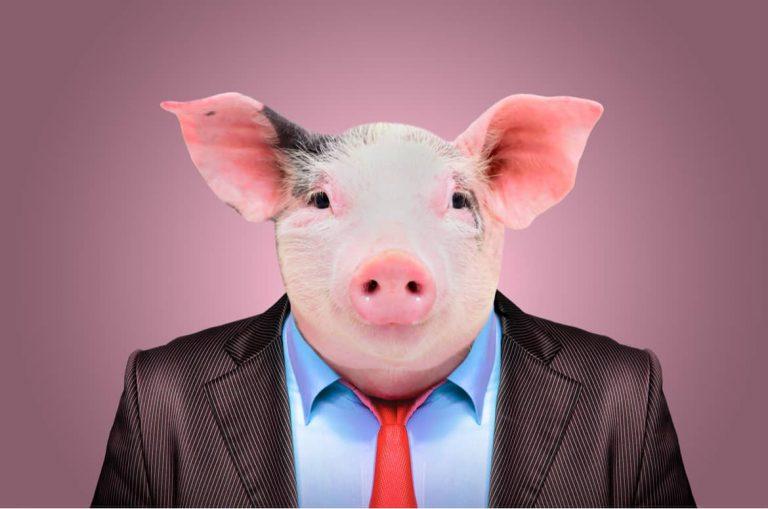 """Der Begriff """"Kollegenschwein"""" klingt drastisch, wird im Berufsleben aber nur allzu oft und gerne verwendet"""