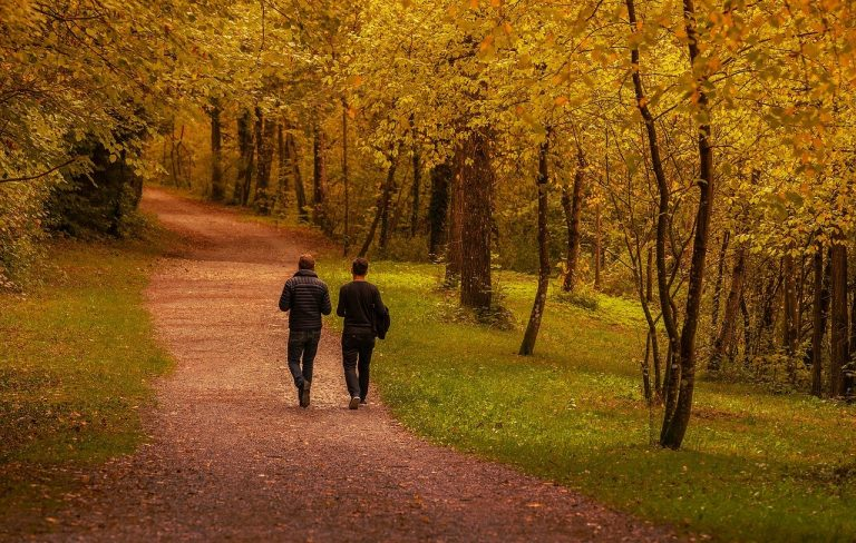 zwei Menschen spazieren im Wald