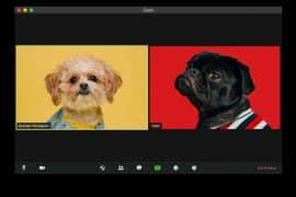 Videokonferenzen: Die besten Tools im Überblick